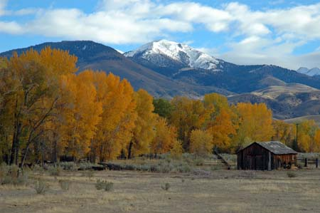 Montana Autumn By Bruce Gourley